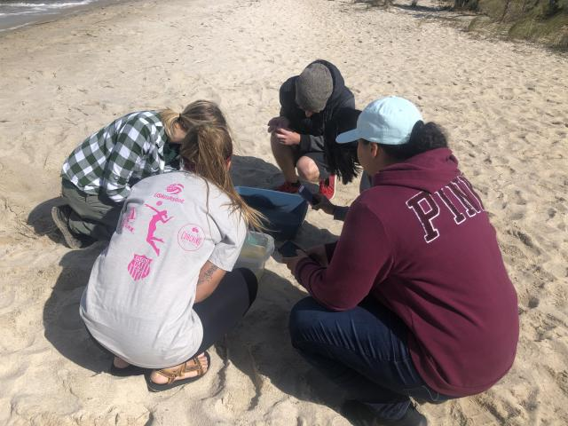 Students go to beaches and Barnegat Bay to do field work in environmental biology