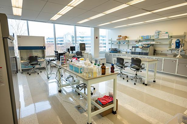 The new Covid test processing lab at Kean University