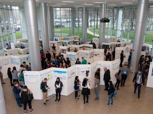 Research days students at poster presentations. School and Clinical Psychology, LPC Qualification, Medical Technology