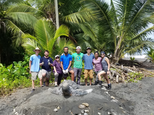 Kean students worked at a turtle habitat on a service trip to Costa Rica.