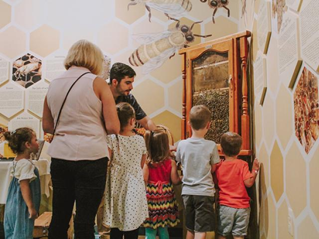 Kean student Mario Cunha teaches a group of children about bees.
