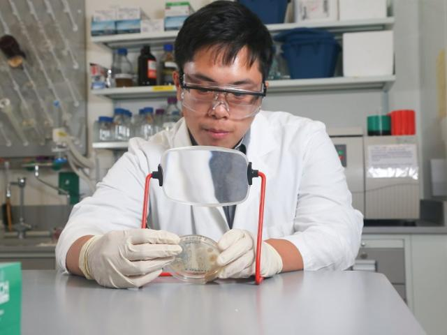 5-year combined B.S. & M.S. degree in Molecular Biology/Biotechnology student in lab